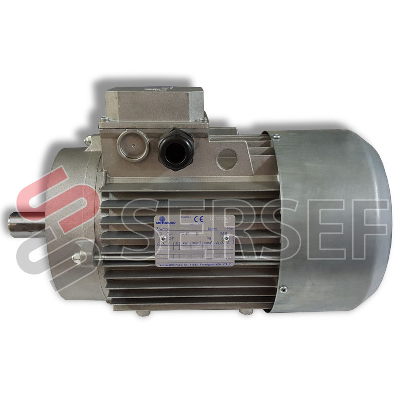 MOTOR 100LB4/B14 KW=3/3.6 HP=4/4.8 220/440 HZ=50 MARCA MOTOVARIO